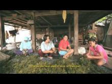 Embedded thumbnail for BaKTI-MAMPU Meretas Jalan Penanggulangan Kemiskinan di Bone